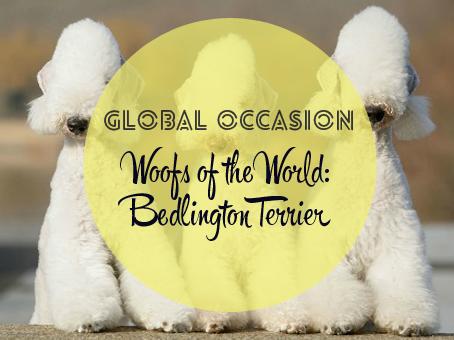Bedlington