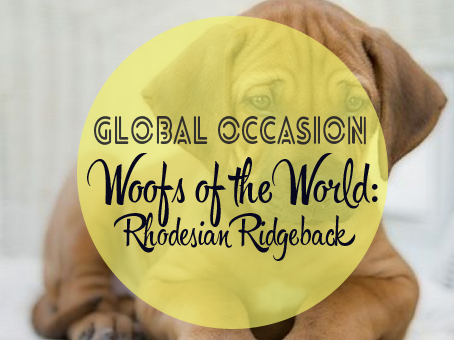 Woofs of the World: Rhodesian Ridgeback   Global Occasion