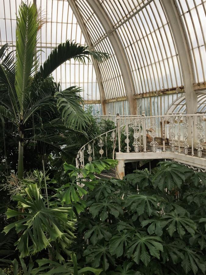Kew Gardens Palmhouse