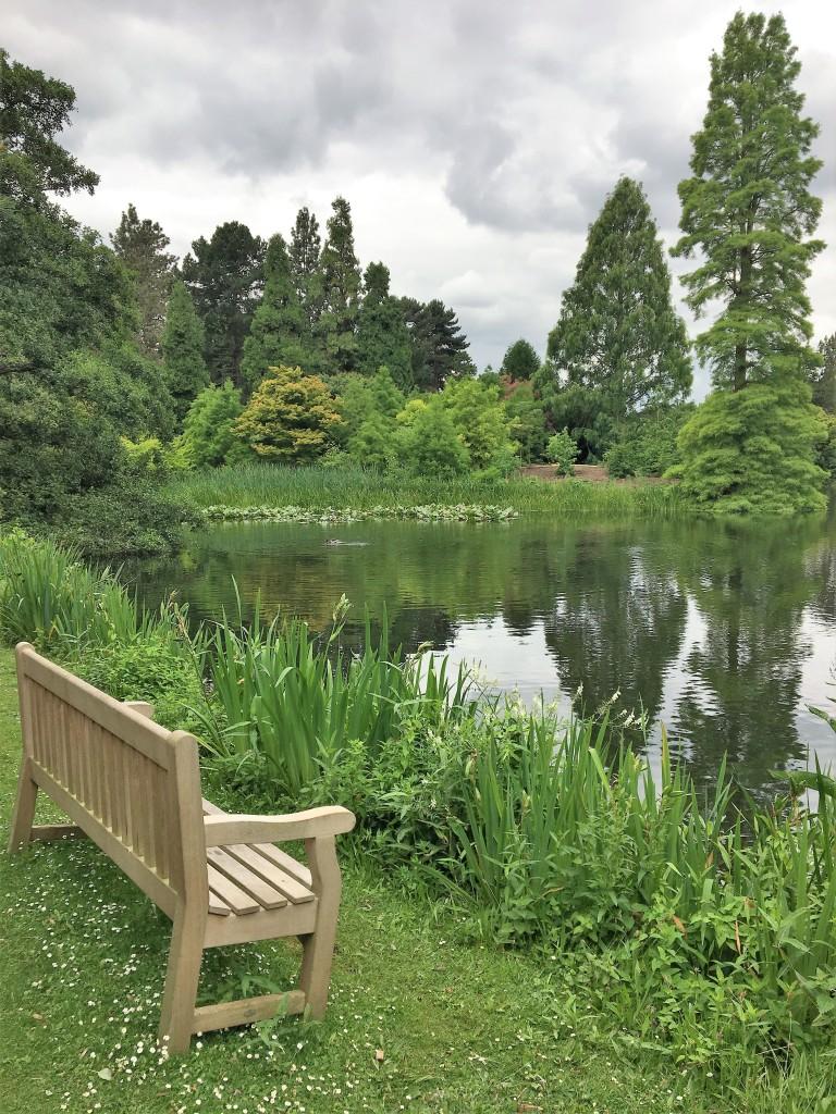 Kew Gardens pond