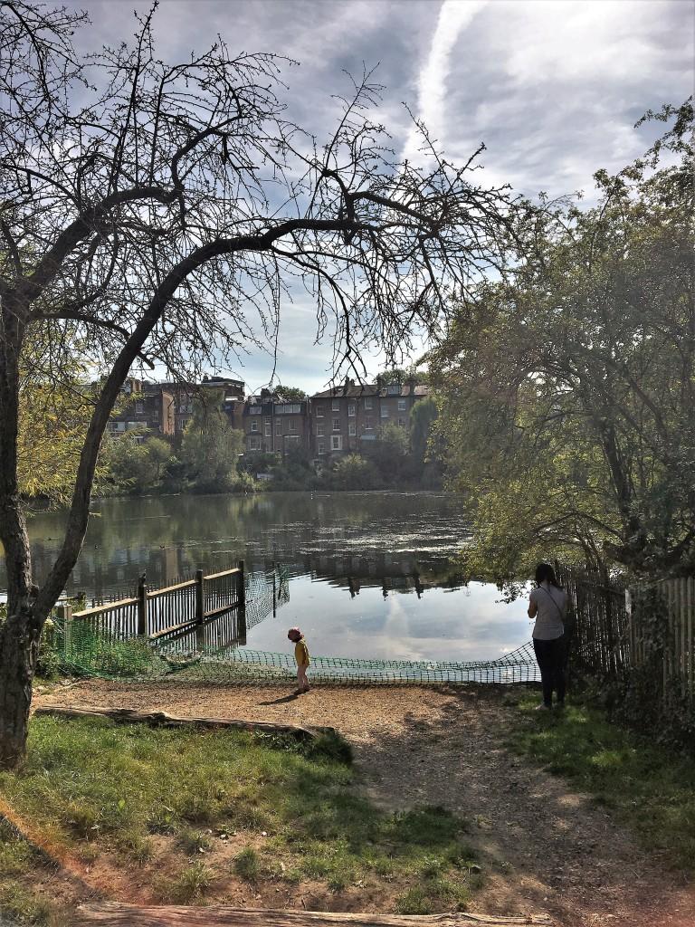 Hampstead Heath Swim Ponds Photography