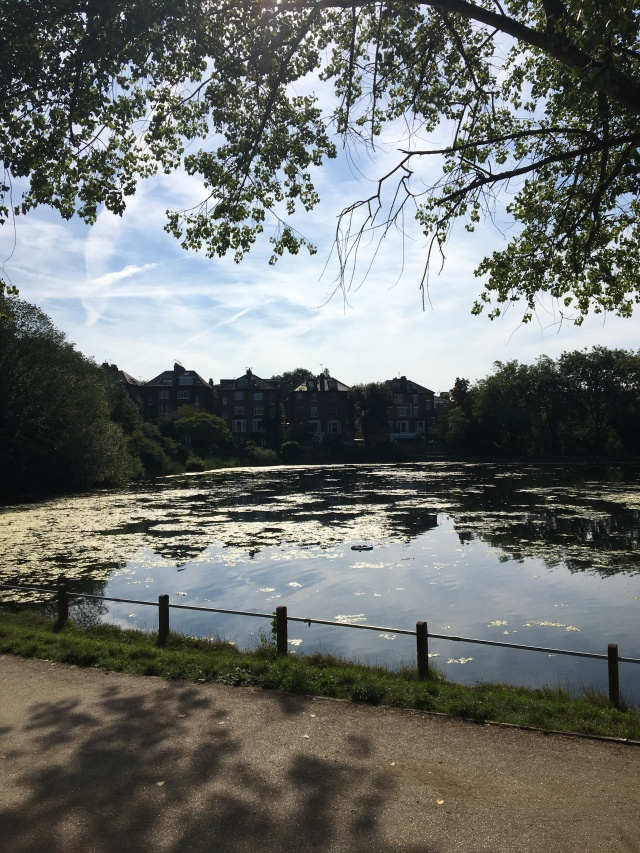 Hampstead Heath Swim Ponds Photography