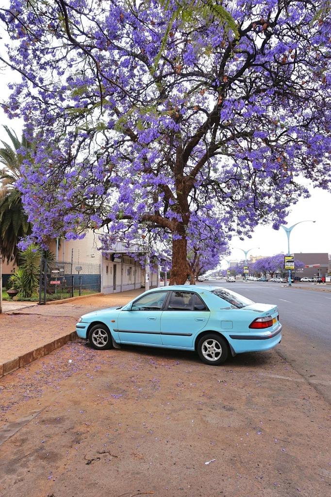 Bulawayo Zimbabwe Travel