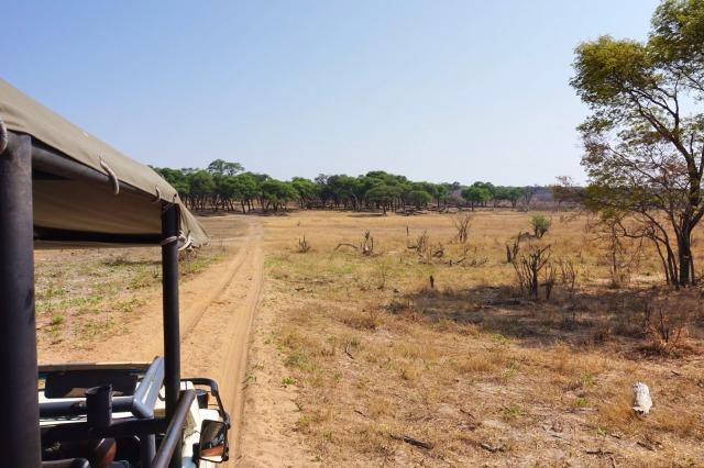 Zimbabwe Travel Hwange National Park