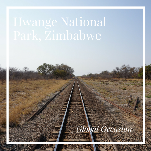 Hwange National Park, Zimbabwe Travel